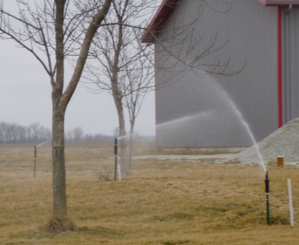 Photo of area outside barn, with sprinklers interspersed with small trees.