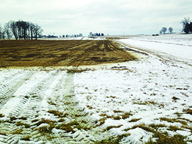 Field in winter, with some snow cover and tractor tracks
