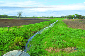 Image of a swale between plowed fields, showing areas of possible runoff.