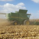 Tips for Calibrating Grain Yield Monitors—Maximizing Value of Your