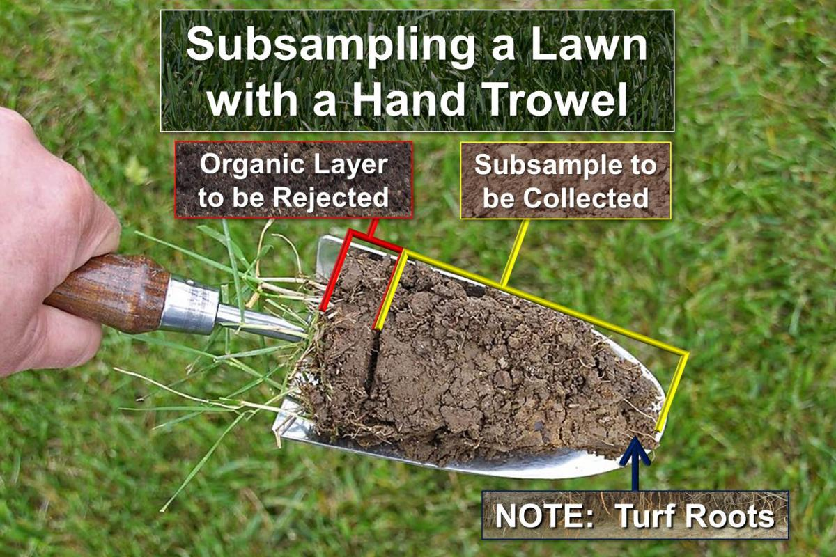 Soil Testing For Ohio Lawns Landscapes Fruit Crops And
