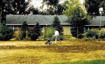 Natural Organic Lawn Care Ohioline