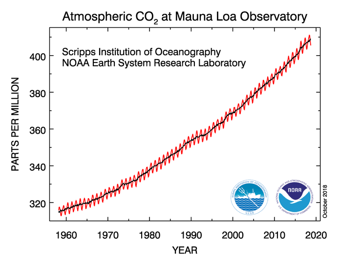 Chart with black and red squiggly line showing climbing changes in atmospheric CO2 from 1959 to start of 2020.