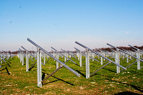 Ground-level view of solar panels filling a field of grass with blue skies above.