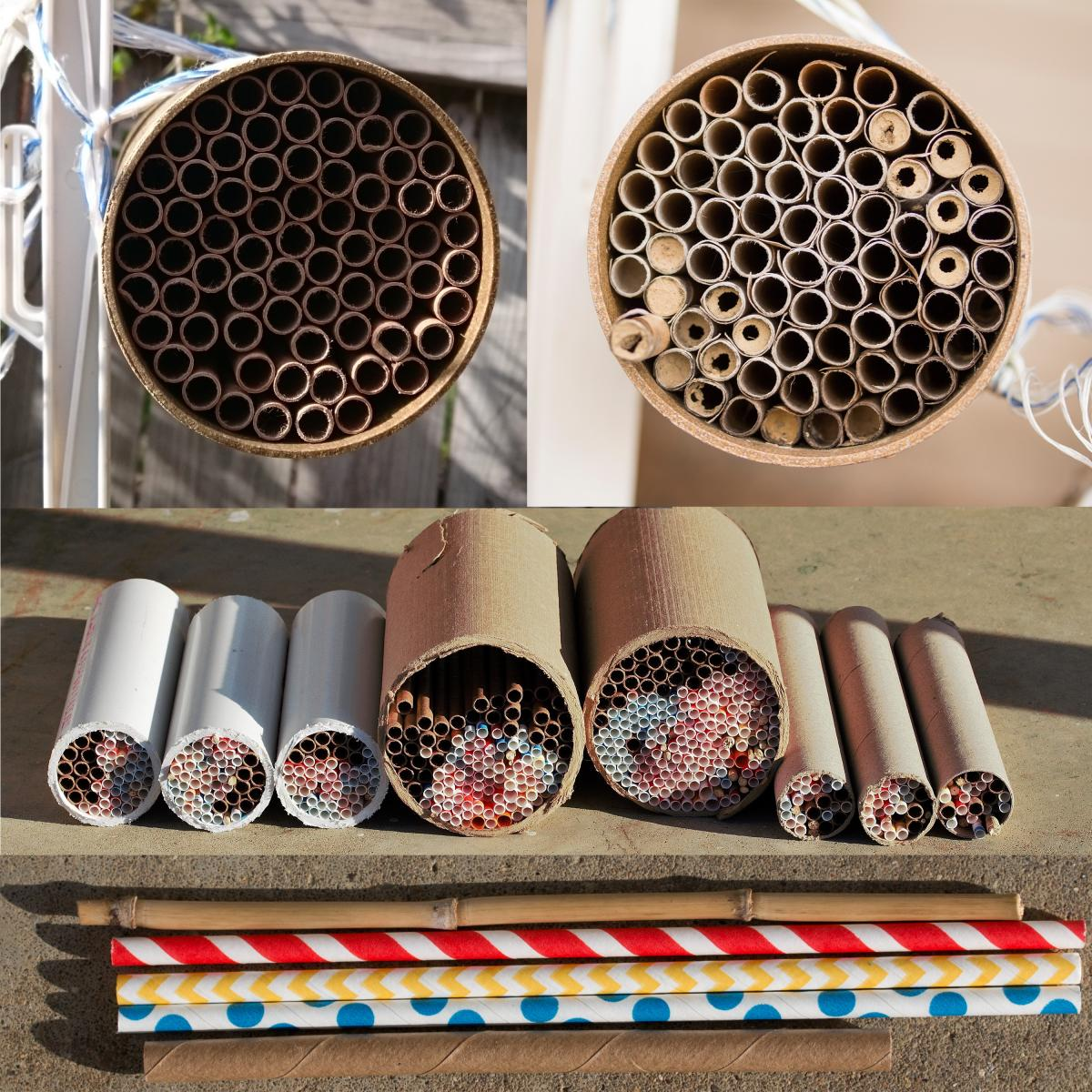 Man-made cavity nesting bee habitat with tubes of various sizes in a larger tube