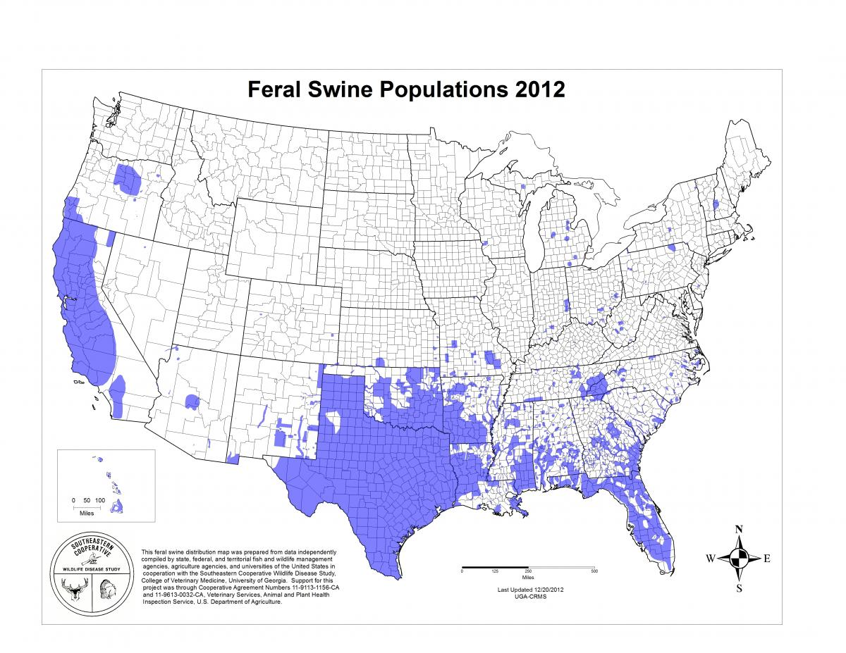 Map Of Feral Swine Locations In The United States