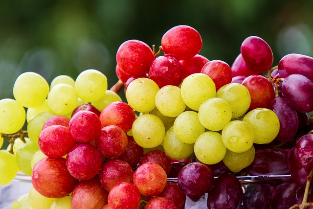 Close up of red and green grape clusters.