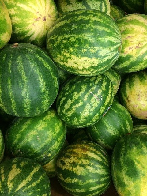 Looking down on a pile of harvested watermelons.