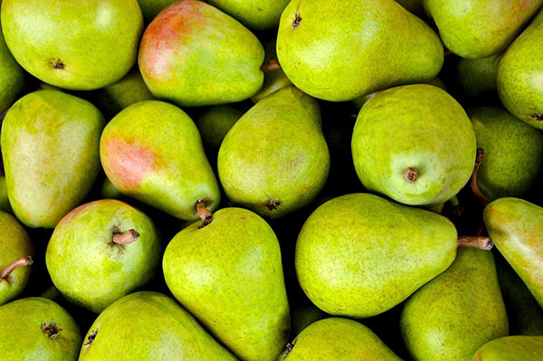 Overhead view of a pile of mostly green Bartlett pears, with a few that have a reddish tinge.