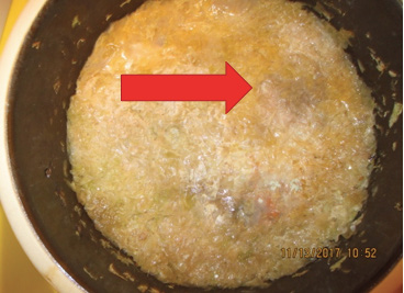Mold on sauerkraut