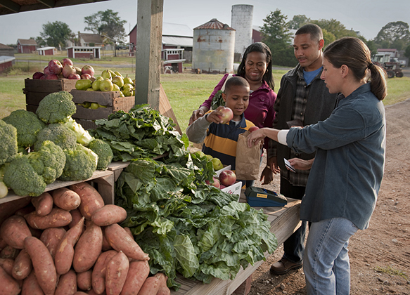 A family picks up vegetables from a CSA vendor
