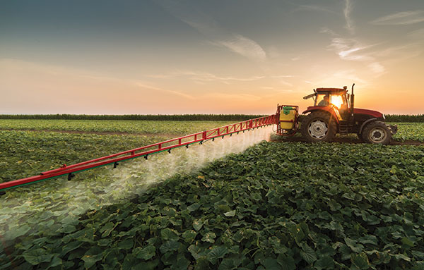 Tractor in field spraying at sunset.