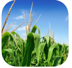 App icon for MRTN Nitrogen Application Calculator