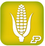 App icon for Corn Field Scout Purdue University