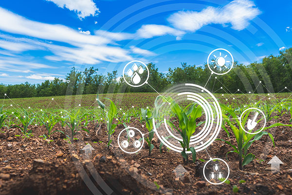 A farm field under a blue sky with a digitized graphic of technology options superimposed over it.